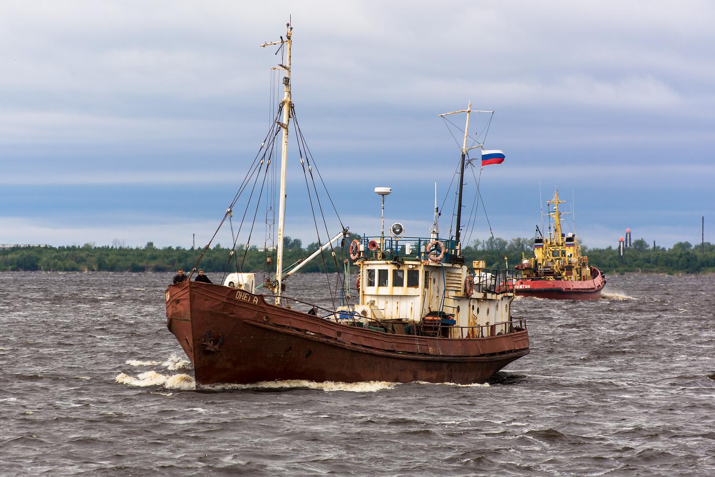 дорога сердцу фото рыбопромысловых кораблей ладожского озера памятник, который