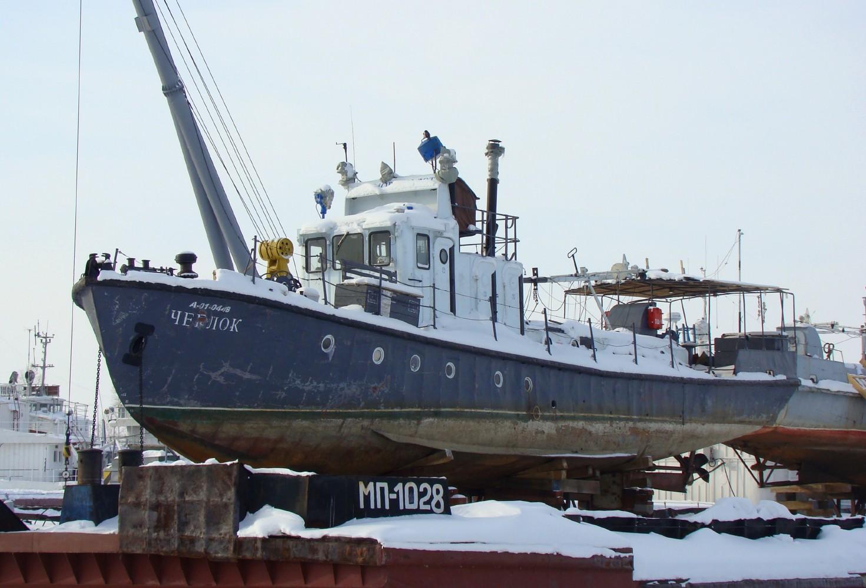 Сколько весит судно ярославец и показать фото