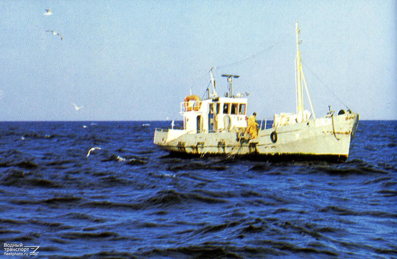 талгат это фото рыбопромысловых кораблей ладожского озера знакомства северными
